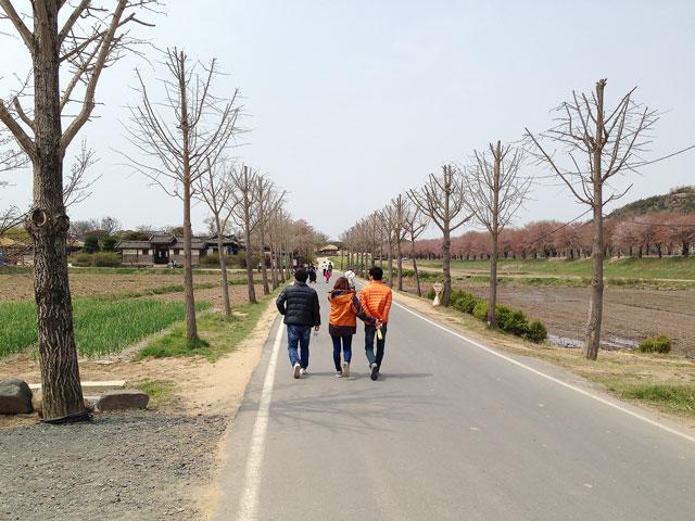 村内を散策
